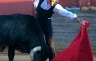 Bullfighting Andalusia